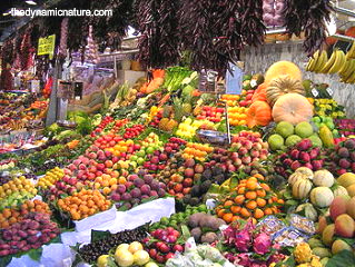 Fruits and vegetables are good sources of most of the vitamins