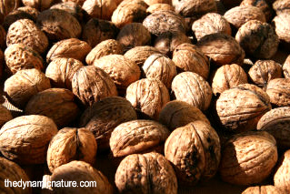 Nuts and seeds are good sources of vitamin B6.